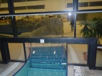 Fürdő szalagfüggöny